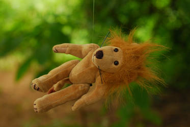 why is this lion hanging in a