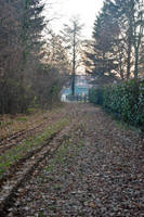 Nature Path by DreamArt-Stock
