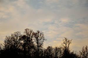 Sunset Sky by DreamArt-Stock