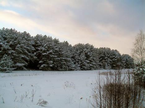 Byelorussian winter