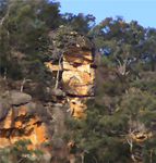 Cliff Face I