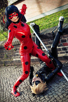 Ladybug - ready to rumble