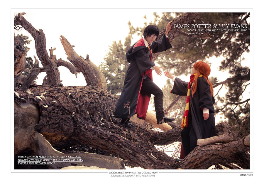 Harry Potter Lily And James Harry Potter James And Lily