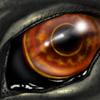 Neomae Eyecon by Neomae