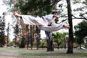 Taekwondo Kick 3 by juanfraire
