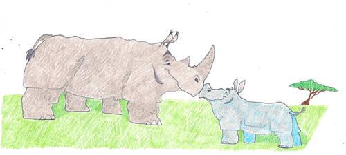 Rhino Papa