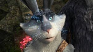 Surprised Bunnymund