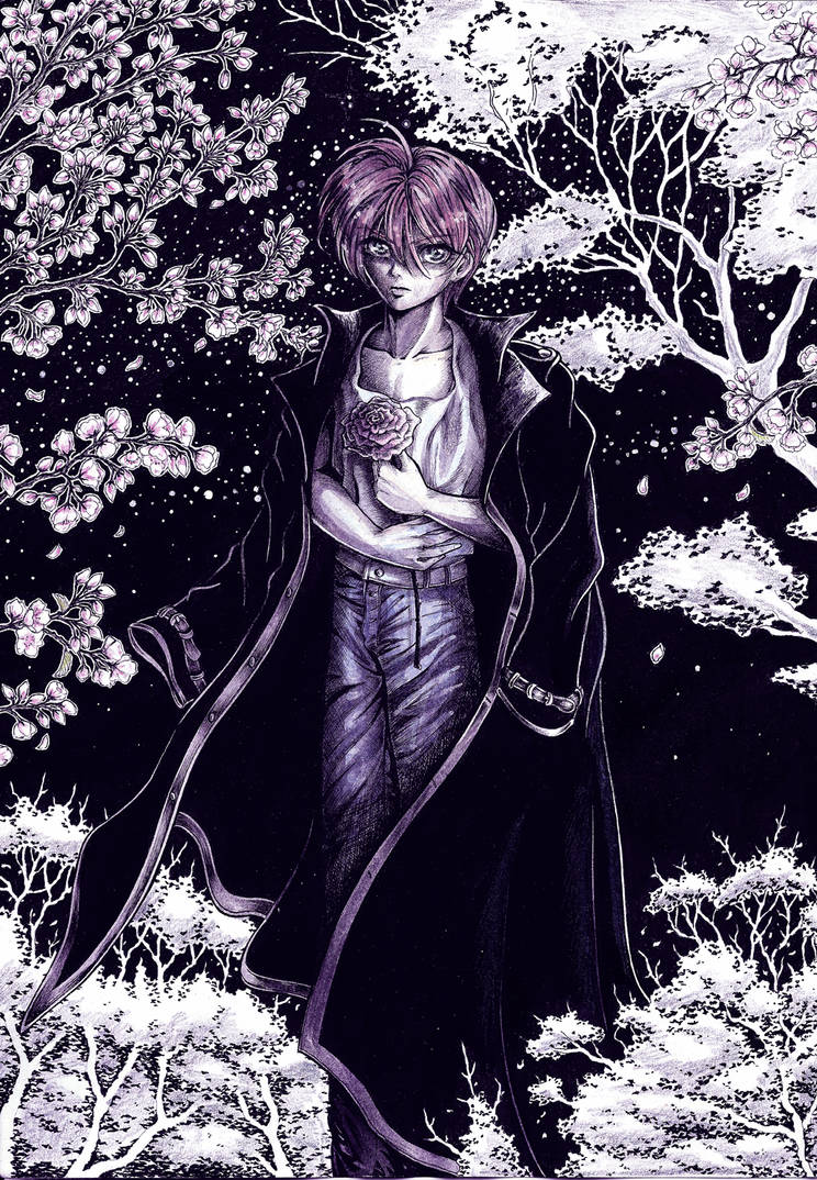 HISOKA KUROSAKI - Fanart - at night by Shinkan-Seto