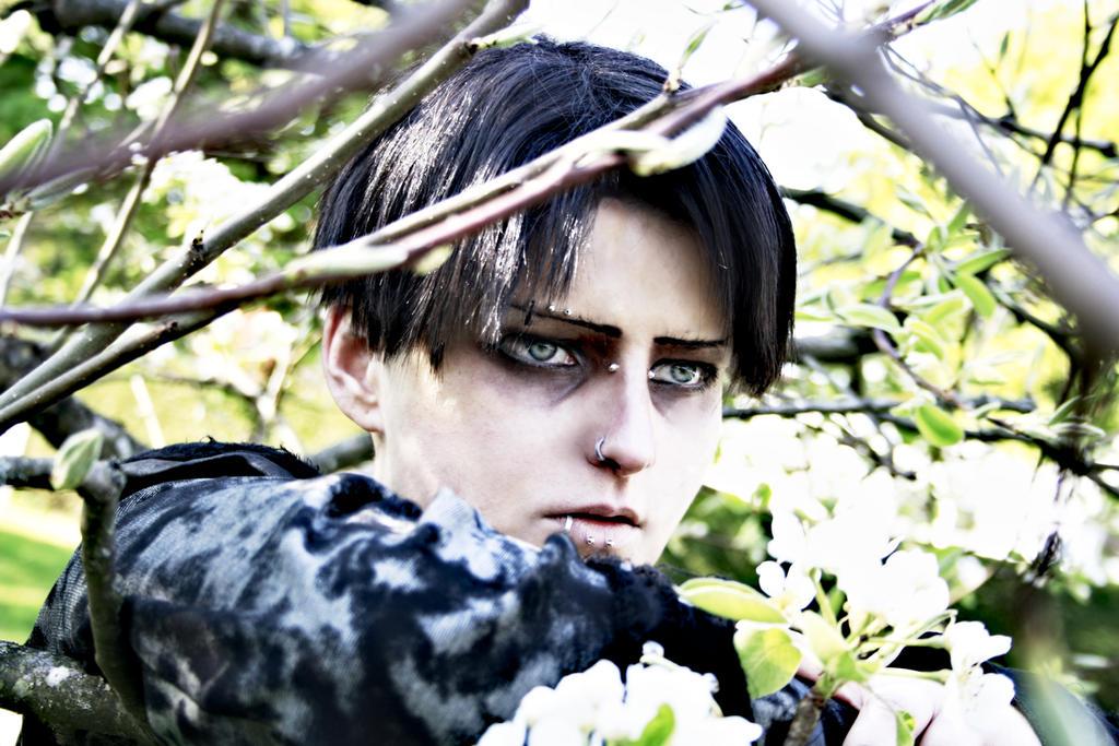 LEVI ACKERMAN - Cosplay - Testshot by Shinkan-Seto on ...