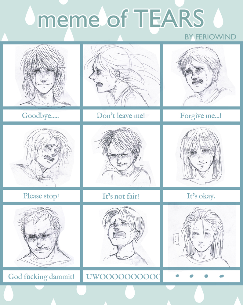 Meme Of TEARS Example By FerioWind On DeviantArt - Hairstyle drawing meme