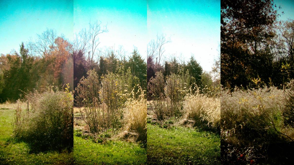 Gardenmulti by errortonin