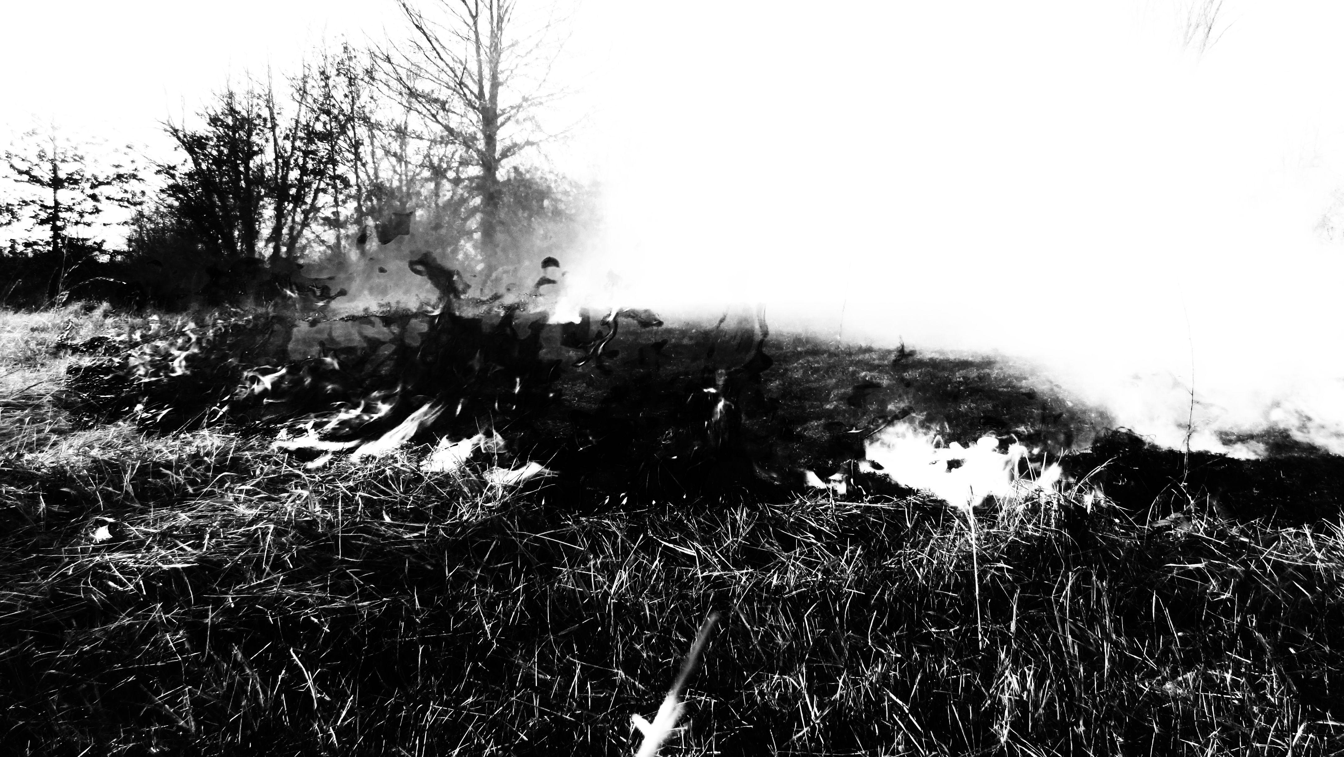 blackfire by errortonin