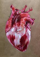 Heart by Rustamova