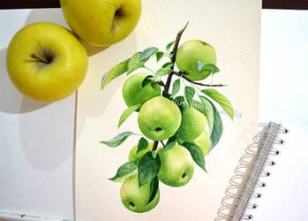 Watercolor apple by Rustamova