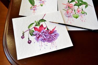 Watercolor fuchsia by Rustamova
