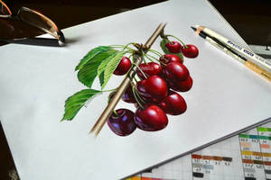 Sweet cherries in pencil by Rustamova