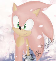 Pink Sonic x3 by Nogaxa