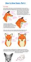 How to draw fox, part 2