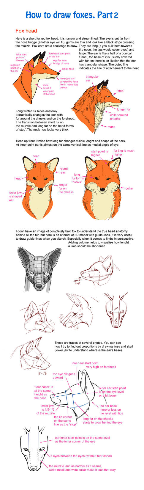 How To Draw Fox, Part 2 By Elruu