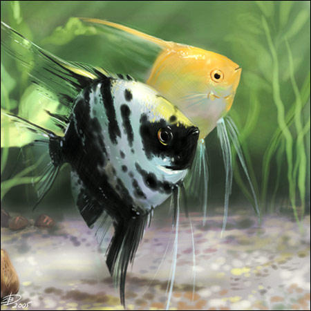 Fish by Elruu