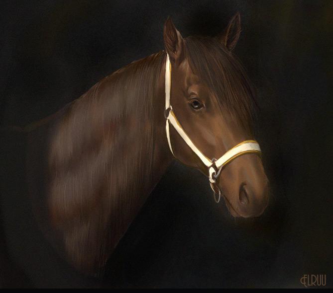 Horse head by Elruu