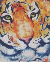 Tiger by versaemergefan