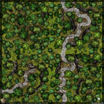 Forest-roads (4)