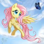Butterfly Fluttershy