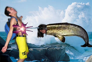Narwhal Attack on the 31st