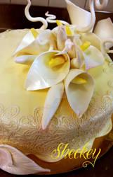 Cake by 6eki