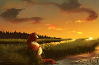 A Gentle Gaze Toward the Sun