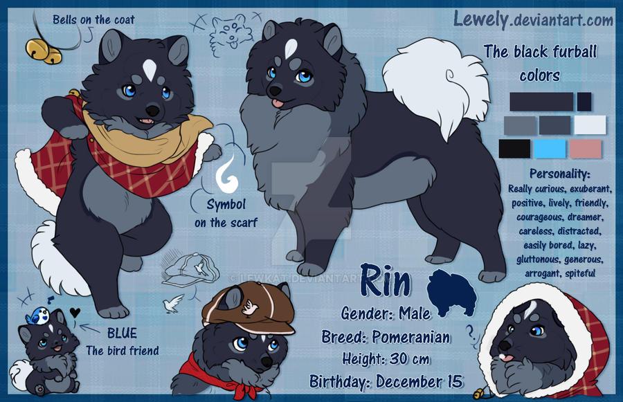 Rin_NEW Character sheet by LewKat