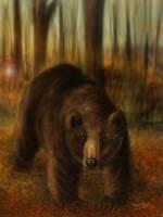 Autumn Bear by Shockshockshad