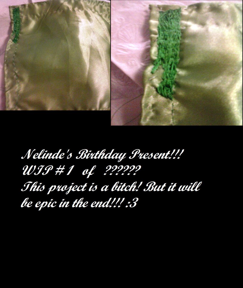 Nelinde's Birthday Present WIP # 1 of ??????? by ravinniaofcreed