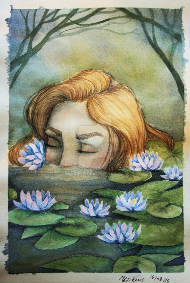 the waterlily by Marlue