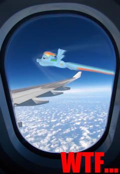 MLP Rainbow dash WTF...
