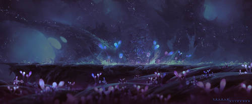 Heart of the Forest by ShahabAlizadeh