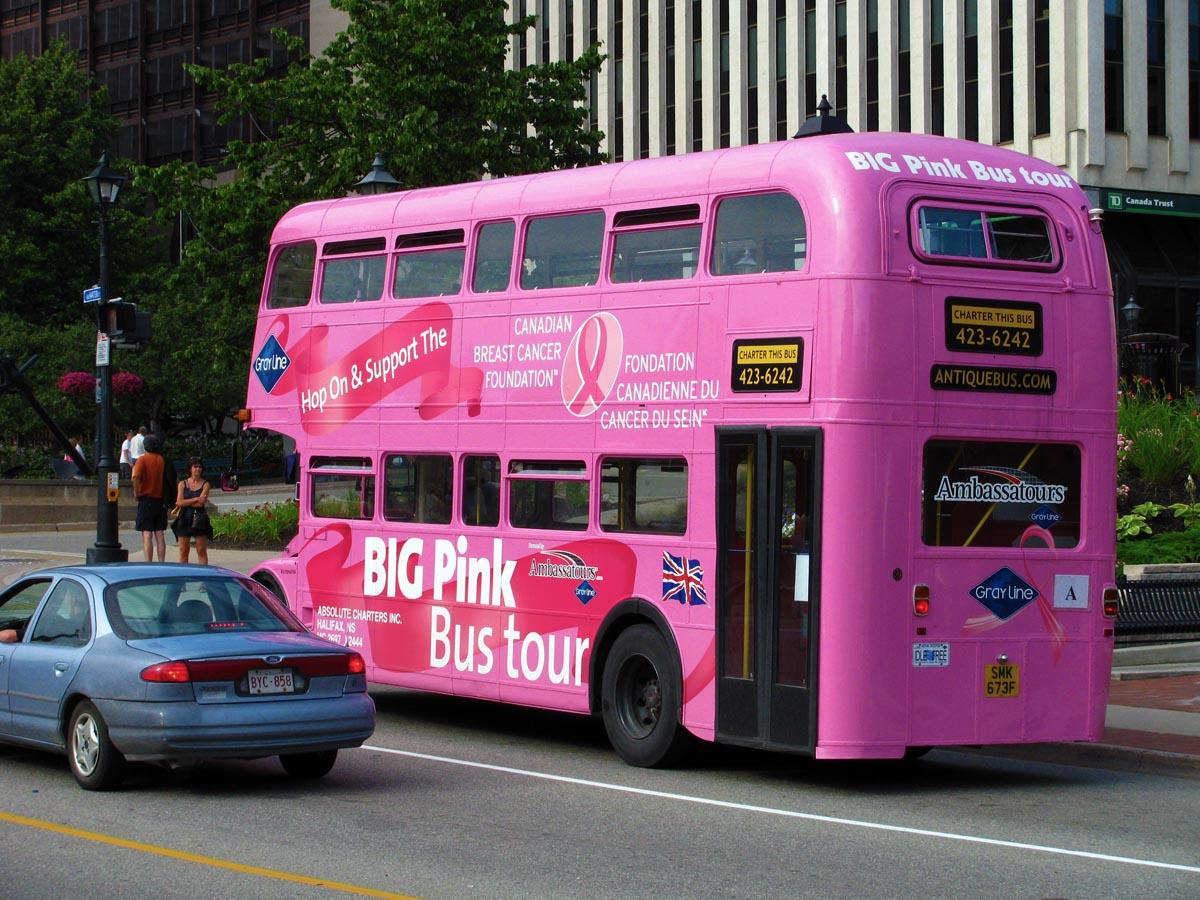 Saint John To New York Bus Tour