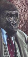 Monkey Suit bookmark
