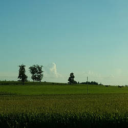 Wisconsin Farmland by WisTex