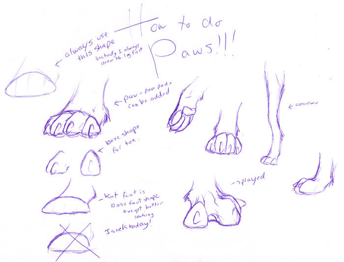 Cats Paws Drawings