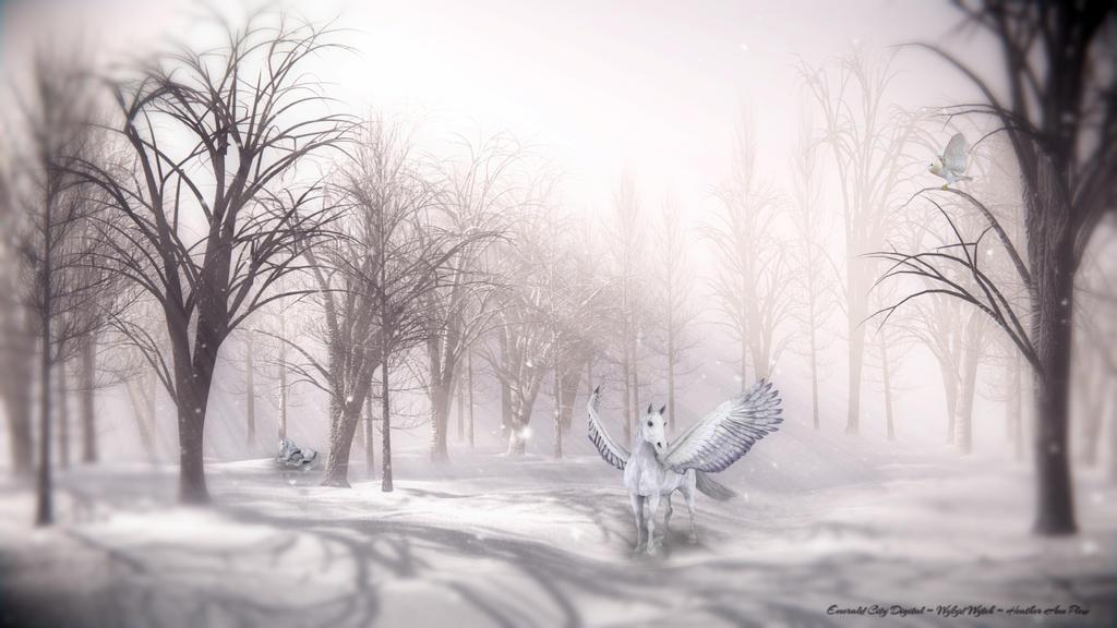 Unicorn Forest by XWykydWytchX