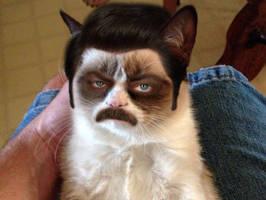 Grumpy Swanson by CheshireCaterling