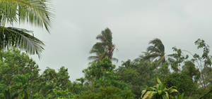 pano thailand 2 - stormy day