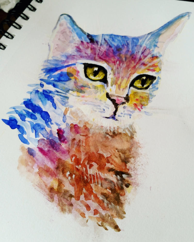 Cat watercolor colorful painting by Helioza on DeviantArt