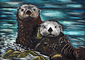 Scratchboard Sea Otters - Color by OnTheMountainTop
