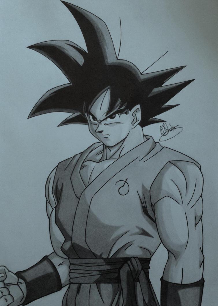 Goku by Conzibar