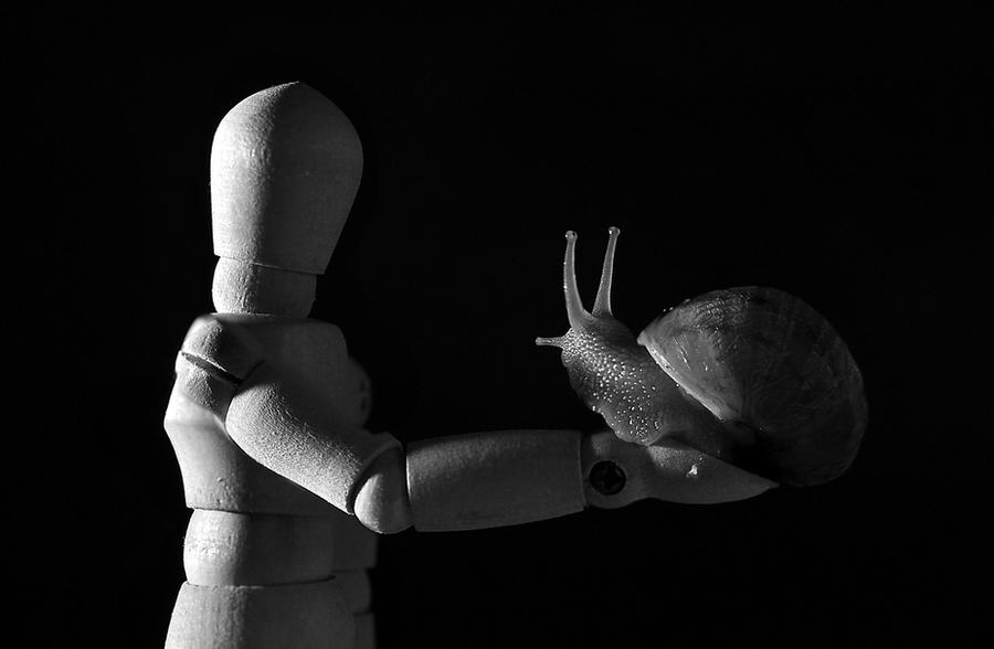Close Encounters by MichelleRamey