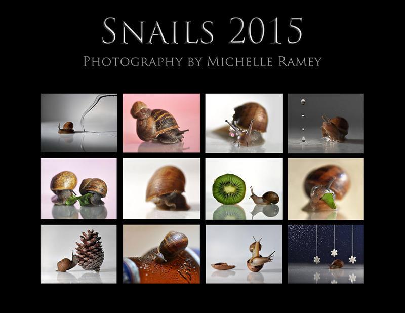 Snails Calendar 2015 by MichelleRamey
