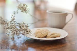 Sugar Cookies by MichelleRamey